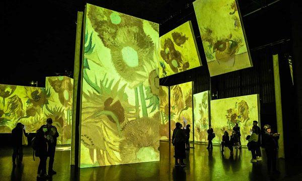 058_Van-Gogh-Alive_Pamela-Raith-Photography